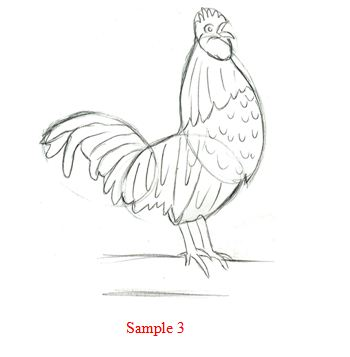 gallery for gt how to draw a rooster step by step