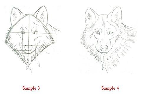 первые три картинки - схема
