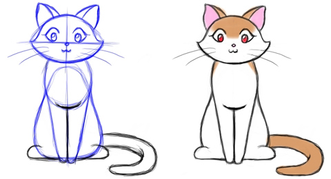 how do you draw a cat