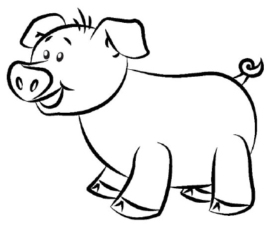 The illustrations used in this 5 step guide on how to draw a cartoon pig